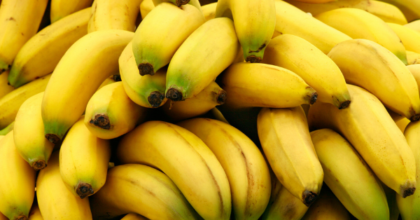 Bananas are radioactive